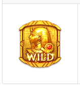 Ký Tự Wild